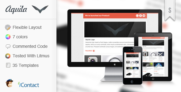 Aquila - Flexible E-mail Newsletter EmailTemplates Email Template