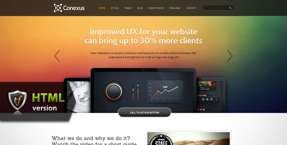 Conexus - Agency HTML Theme Template Corporate