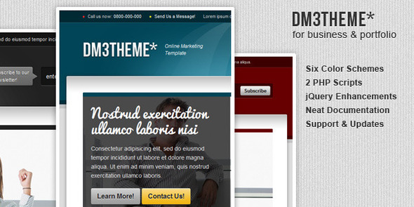 DM3THEME - 6in1 Services Marketing Template LandingPages Landing Page