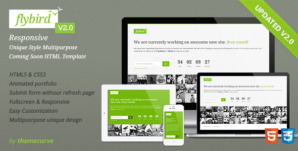 Flybird - Coming Soon Page Template Specialty Page