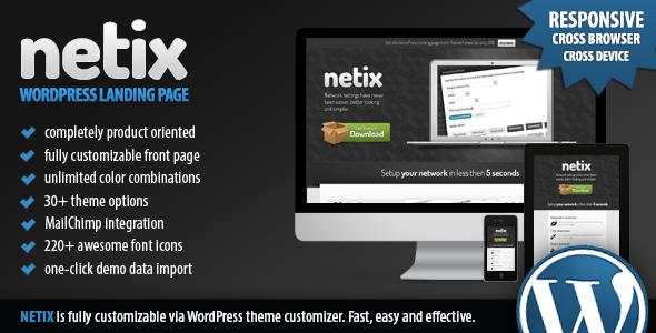 Netix - Responsive WordPress Landing Page Technology