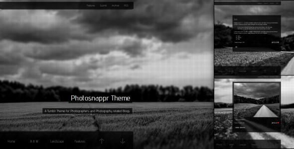 Photosnappr, a Tumblr Theme for Photographer