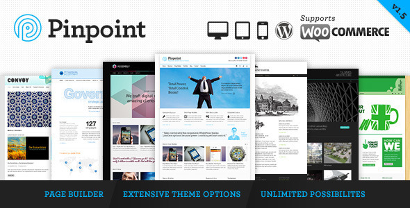Pinpoint - Responsive Multi-Purpose WP Theme WordPress Corporate