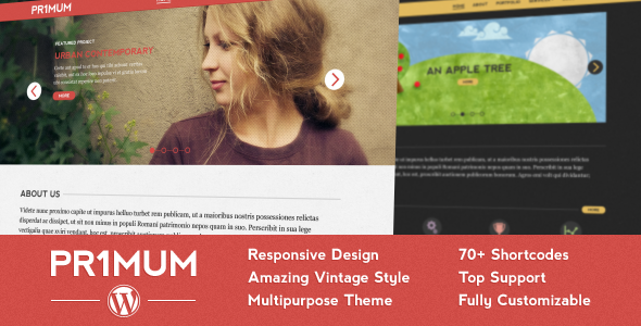 Primum - Responsive Vintage WordPress Theme Corporate