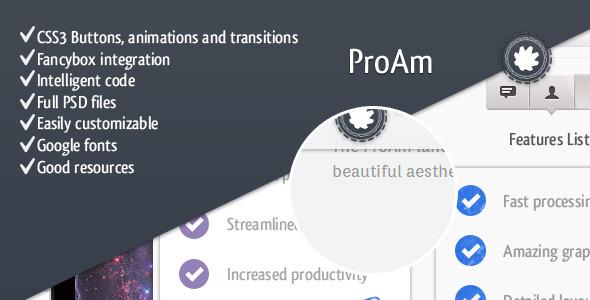 ProAm - Premium Landing Page LandingPages Landing Page