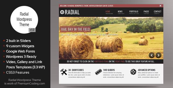 Radial - Creative Blog & Portfolio Wordpress Theme Blog/Magazine