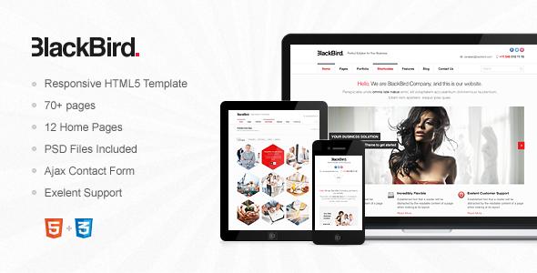 BlackBird - Responsive HTML5 Template