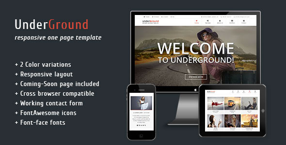 UnderGround - Responsive One Page Template