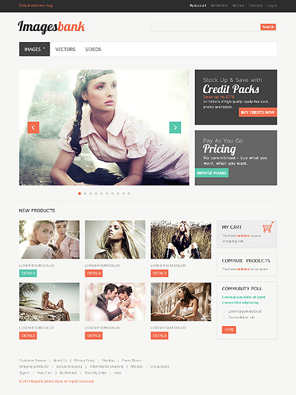 Responsive E-commerce Templates WordPress Theme