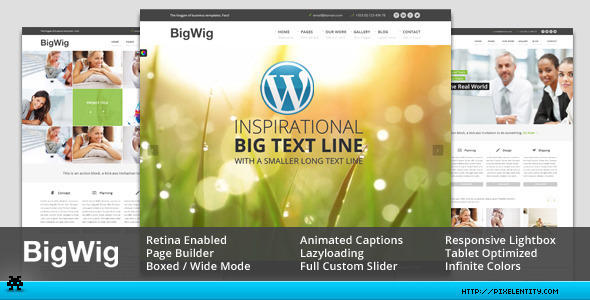 BigWig - Modern Corporate Retina WordPress Theme