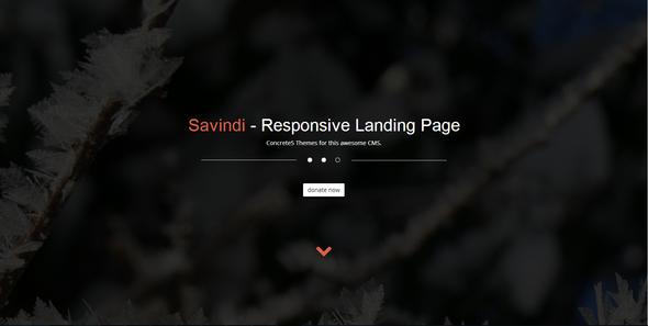 Savindi - Responsive Landing Page  TForest