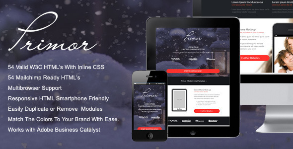 Primor - Responsive Email Template  TForest
