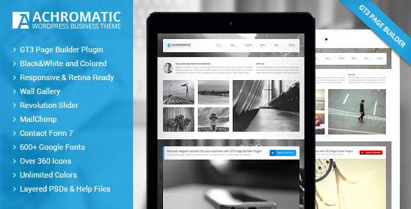 Achromatic Business WordPress Theme  TForest