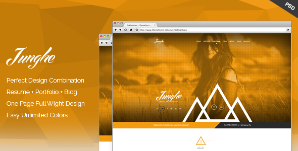 Junghe - One Page Personal Portfolio Templates  TFx