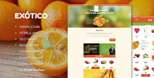 Exotico Responsive HTML Template  TFx SiteTemplates