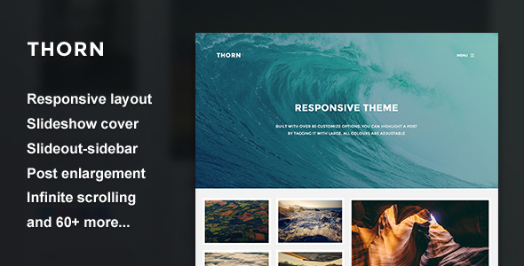 Thorn - Responsive Grid Theme  TFx Blogging