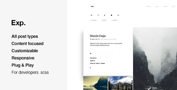 Exp - Portfolio, Grid Based Tumblr Theme            TFx