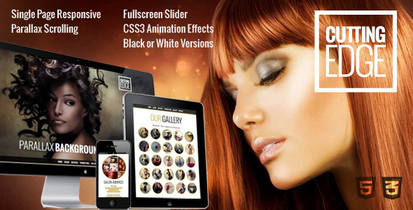 Cutting Edge - Spa Hair Salon WooCommerce WP Theme            TFx