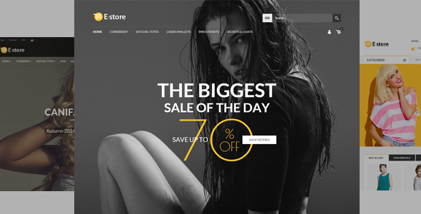 E-Store - Responsive HTML Template            TFx