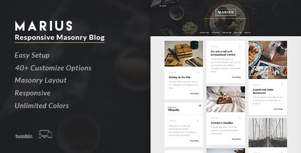 Marius - Responsive Masonry Blog Tumblr Theme            TFx