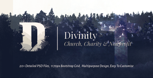 Divinity - Unique Church, Nonprofit & Charity Template            TFx