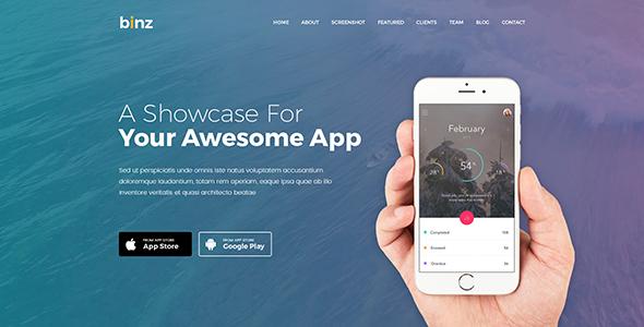 Binz App PSD Templates            TFx