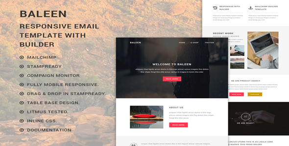 baleen - Responsive Multipurpose Email template with Stampready builder            TFx