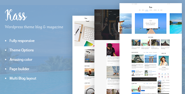 Kass - Simple Blog/Magazine WordPress Theme            TFx