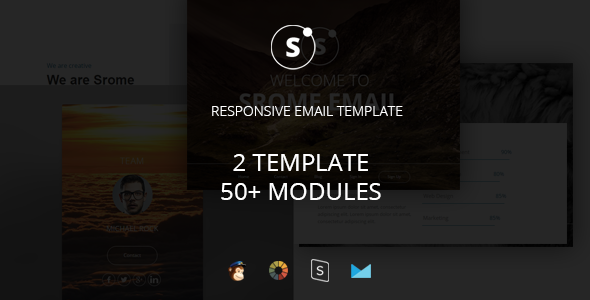 Sromed - Multipurpose Responsive Email Template + Stampready Builder            TFx