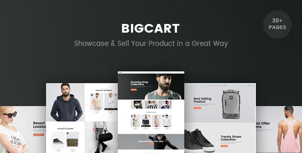 Bigcart - eCommerce PSD Template            TFx