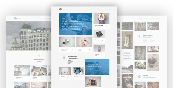 Woodbury - Multi-purpose WordPress Theme            TFx