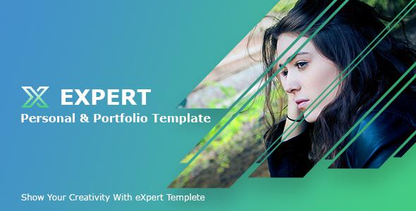 Expert_Personal Profile/Resume PSD Template            TFx