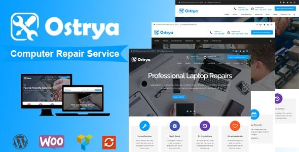 Ostrya - Computer Repair Service WordPress Theme            TFx