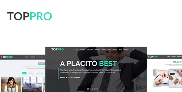 TOPPRO - is a Premium HTML Responsive Templeate            TFx