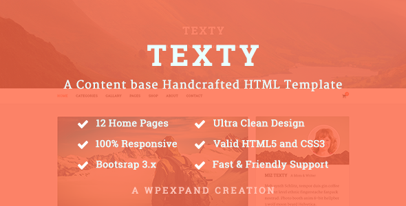 Texty - A Content-based Handcrafted HTML Template            TFx