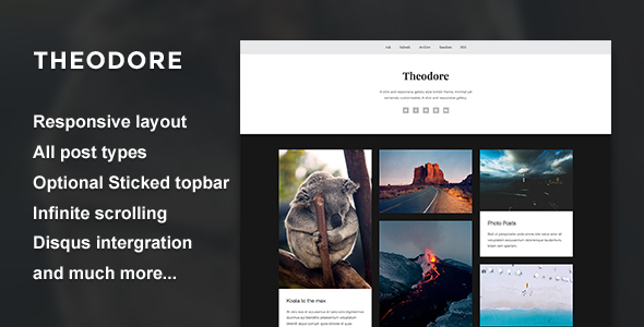 Theodore - A Responsive Gallery Theme            TFx
