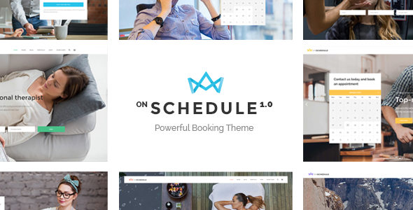 OnSchedule - A Booking Theme for Business and Retail            TFx