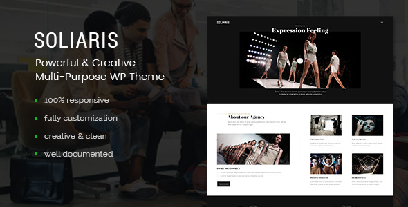 Soliaris - Multi-Concept Business WordPress Theme            TFx