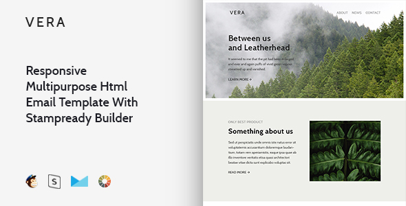 Vera – Responsive Multipurpose Email Template + Stampready Builder            TFx