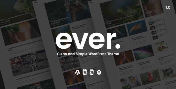 Ever - Clean and Simple WordPress Theme            TFx
