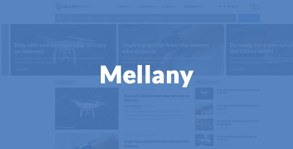 Mellany - WordPress Theme for Magazine / News / Blog            TFx