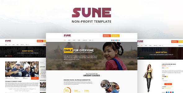 SUNE non-profit PSD Template            TFx