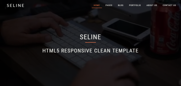 Seline - HTML5 Responsive Clean Template            TFx