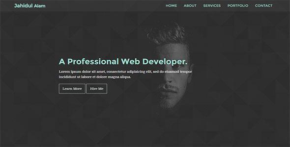 Solo-Personal Portfolio Template            TFx