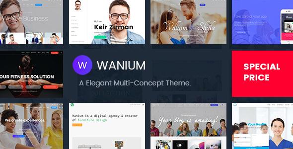 Wanium - A Elegant Multi-Concept Theme            TFx