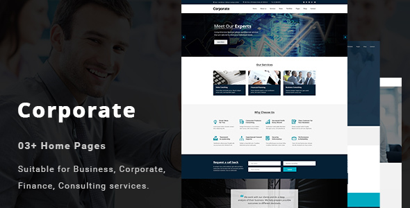 Corporate – Business and Professional Services PSD Template            TFx