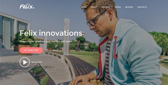 Felix. - Startup Landing Page WordPress Theme            TFx