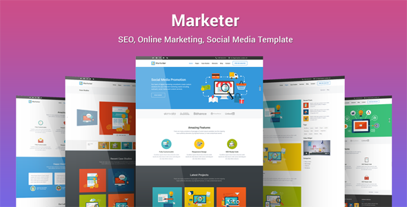 Marketer – SEO, Online Marketing, Social Media WordPress Theme            TFx