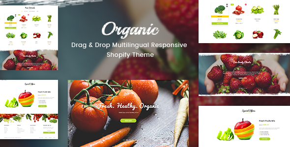Organic - Drag & Drop Multilingual Responsive Shopify Theme            TFx