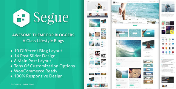 Segue - Multilayout Personal WordPress Blog Theme            TFx